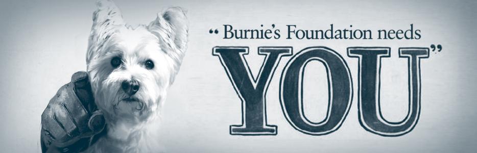 Burnie Needs You